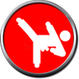 //www.lanners.coach/wp-content/uploads/2016/12/karate-4.png